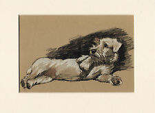 More details for sealyham terrier lovely image old 1930's cecil aldin dog art print ready mounted