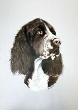 ENGLISH SPRINGER SPANIEL animal realism A3 colored pencils on paper by ArtKaska