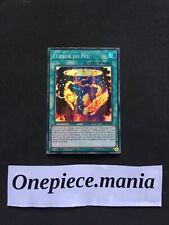Yu-Gi-Oh! Fureur du Feu (Salamangrande) : DANE-FRSE2 -VF/Super Rare-