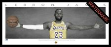LeBRON JAMES LA LAKERS WINGS - FRAMED LITHOGRAPH NBA ALL-STAR NBA FINALS MVP