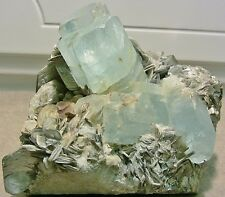 Blue Aquamarine Crystal Cluster in Muscovite Matrix w/ Morganite = Pakistan