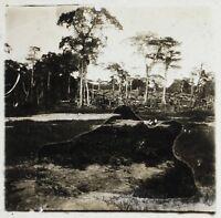 Africa Ouesso Congo Foto ND1 Placca Da Lente Stereo Vintage Ca 1910