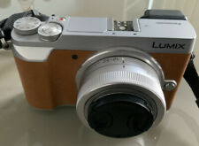 Panasonic Lumix DMC-GX80 with 12-32mm lens and LX100 case (tan colour)