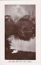 The Pond, West End Park, GLASGOW, Lanarkshire RP