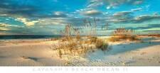 BEACH DREAM II ART PRINT BY DOUG CAVANAH ocean front sand dunes coastal poster