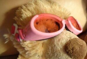 Doggles Dog Goggles eyewear Pink med?