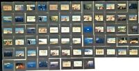 Vintage 35mm CENEI Made in Germany Colour Photo Transparency Slides x 68