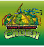 A3 TMNT Personalised Edible Image REAL Icing X-Large Cake Topper