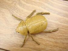Insect Beetle Figure