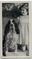 Springer Spaniel Dog With Young Child 1930s  Ad Trade Card