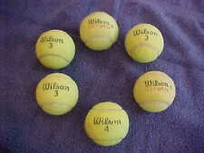 Wilson TENNIS BALLS 6 Lot DOG TOYS PROTECT CHAIR LEGS REMOVE SCUFFS FLUF TOWELS