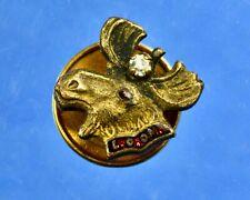 10K Gold Lapel Pin: Loyal Order of Moose (L.O.O.M), circa 1920