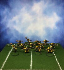 The Reikland Reavers Blood Bowl Team Averland Knights