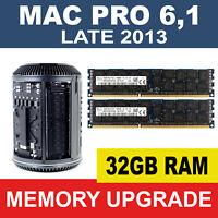 32GB (2 X 16GB) DIMM Apple Mac Pro Late 2013 A1481 MacPro 6,1 Memory Ram