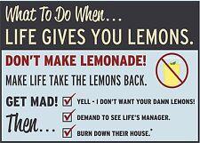 Cuando la vida te da limones, Divertido Calcomanía Adhesivo Pared Coche Furgoneta Bicicleta Portátil