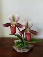 "Andrea by Sadek porcelain flower figurine ""Orchid"""