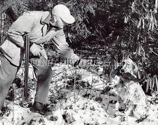 8X10 Repro Photo Ruffed Grouse Hunting Ryman English Setter George Bird Evans