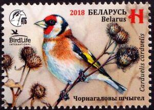 2018. Belarus. Bird of the year. European goldfinch. Stamp. MNH