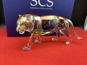 Swarovski Figure 1003148 Scs 2010 Tiger 7 1/8in Box & Zertifikat. Top Condition