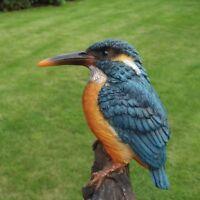 Gartenfigur Eisvogel 37.189 Vogel Garten Haus Deko lebensecht Figur