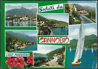 AA5564 Verbania - Provincia - Saluti da Cannobio - Vedute - Cartolina - Postcard