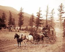 OLD WEST STAGECOACH VINTAGE PHOTO COWBOYS HORSES 1875 8x10  #21695
