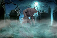 WEREWOLF pvc Statue Figure From the Howling Movie