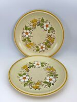 "Set of 2 Hearthside Garden Festival Handpainted Stoneware Japan 10.5"" Plates"