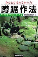 Traditional Japanese Garden Tea Ceremony Basin & Moss Garden Zen Landscape