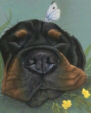 More details for rottweiler print on canvas, painting, gift, art, picture