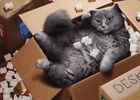 Cat Inside Moving Box - Avanti Funny Encouragement Card by Avanti Press photo