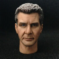 """1:6 Scale Harrison Ford Male Head Sculpt F 12"""" Hot ZY Toys Phicen Action Figure"""