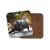 Beautiful Otter Coaster - Wild Animal Nature Cute River Cool Zoology Gift #12642