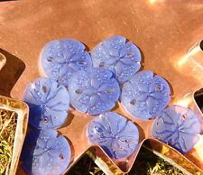 Small Sand Dollar Beads Pacific Blue W/ Sea Glass Finish 21mm 2 Pcs
