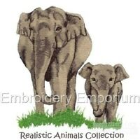 REALISTIC ANIMALS COLLECTION - MACHINE EMBROIDERY DESIGNS ON CD OR USB