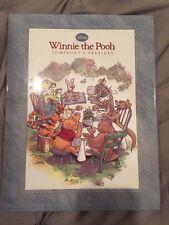 Disney's Winnie The Pooh - Somebody's Treasure Children's Kids Book