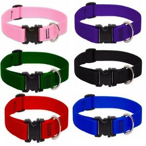 Lupine Collar For Dog Cat Puppy | Adjustable Sizes | Ancol Pet Strong For Safety