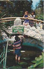 Postcard Fl Florida Miami Tropical Hobbyland Pond Seminole Indians 1950s Unused