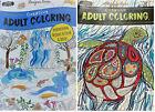 Creative Creatures  Scenery Adult Coloring Book Designer Series Books Set of 2