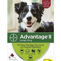 Advantage II For Large Dogs 21-55 lbs, 6 Month Supply