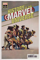 HISTORY OF MARVEL UNIVERSE #1 David Marquez 1:50 NM Variant