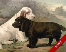 Black & White Field Spaniels Pet Puppy Dog Art Painting Print On Real Canvas