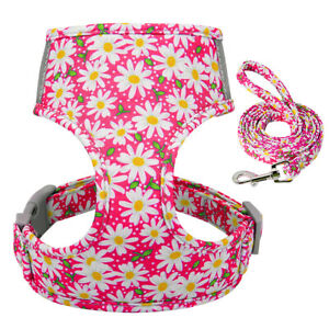 Reflective Cat Harness and Leash for Walking Soft Mesh Vest for Small Medium Dog