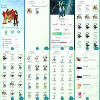 Premium Tier - Pokemon Go ✨2+ shiny ✨40+ legendary/ mythical ✨2+ shiny legendary