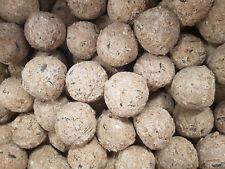 2kg Fat Balls Suet Wild Bird Food Feed Seed No Net