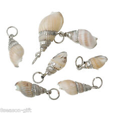 Shell Charm Pendants Conch Natural Silver Plated 5 PCs DIY Jewellery Crafts