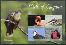 Guyana 2017 MNH Birds of Guyana 4v M/S II Flamingos Pelicans Ospreys Stamps