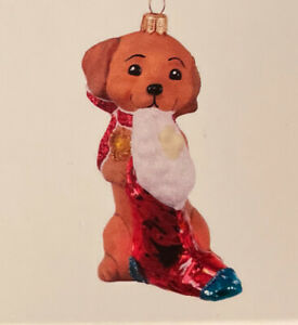 2020 Hallmark Keepsake Ornament Glass Adorable Dachshund Doxie Dog New