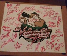 TRI CITY VALLEY CATS SIGNED TEAM LOGO 2019 LEE KESSINGER PEREZ 25 AUTOGRAPHS
