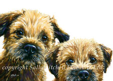 10 border terrier greetings cards by Paul Doyle C269